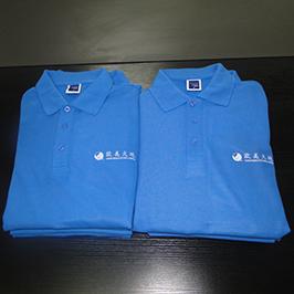 ตัวอย่างการพิมพ์เสื้อโปโลที่กำหนดเองโดยเครื่องพิมพ์เสื้อยืด A3 WER-E2000T